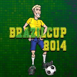كأس البرازيل 2014