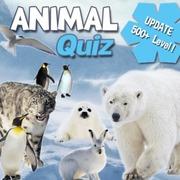 مسابقة الحيوان