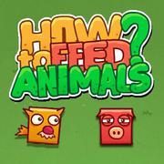 كيفية إطعام الحيوانات